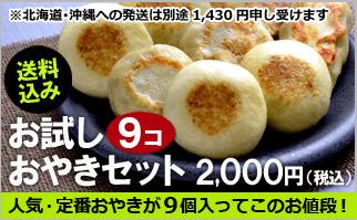 長野おやき工房旬菜花 お試しおやき9個セット